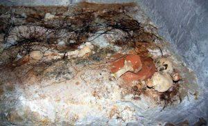 Kutahyada bulunan mezar odası